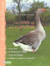 Les oies et les canards - Intérieur - Format classique