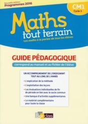 MATHS TOUT TERRAIN ; CM1 ; guide pédagogique (édition 2017) - Couverture - Format classique