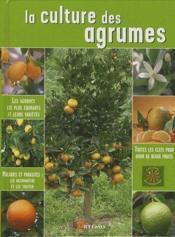 La culture des agrumes - Couverture - Format classique