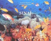 Sinaï ; visions de plongeurs en mer rouge - Couverture - Format classique