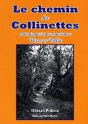 Le Chemin Des Colinettes - Couverture - Format classique