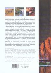 CHEMIN D'ETOILES N.13 ; le bestiaire du voyageur - 4ème de couverture - Format classique