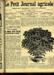 LE PETIT JOURNAL AGRICOLE N° 893 - Deux bonnes plantes fleuries pour exposition nord ou ombragée (P Laborde). - Couverture - Format classique