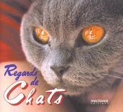 Regards de chats - Intérieur - Format classique