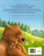 L'ourse et son merveilleux secret - 4ème de couverture - Format classique