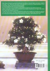 101 astuces bonsais - 4ème de couverture - Format classique