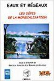 Eaux Et Reseaux. Les Defis De La Mondialisation - Intérieur - Format classique