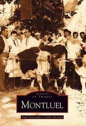 Montluel - Intérieur - Format classique