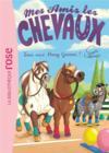 Mes amis les chevaux T.20 ; tous aux pony games !