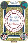 Énergies sacrées ; les runes