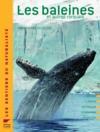 Les baleines ; et autres rorquals
