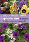 Pommier Adore Les Asters