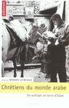 Chrétiens du monde arabe ; un archipel en terre d'islam