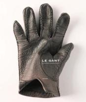 Le gant - Couverture - Format classique