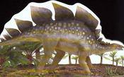 Stegosaure - Intérieur - Format classique
