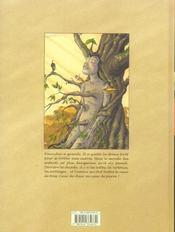 Pinocchio t2 coeurs de pierre - 4ème de couverture - Format classique