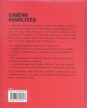 Chiens insolites - 4ème de couverture - Format classique