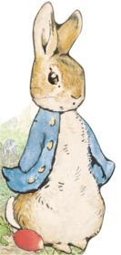 Bonjour, pierre lapin ! - Couverture - Format classique