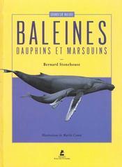 Les Baleines, Les Dauphins Et Les Marsouins - Intérieur - Format classique