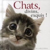 Chats divins, exquis ! - Intérieur - Format classique