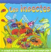 Mini pop-up ; les insectes - Intérieur - Format classique