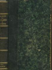 La Flamme Et L'Ombre. Roman Contemporain. - Couverture - Format classique