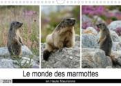 Le monde des marmottes en Haute Maurienne (calendrier mural 2021 din a4 horizontal) - la vie trepide - Couverture - Format classique
