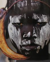 telecharger Guerriers d'Afrique livre PDF/ePUB en ligne gratuit