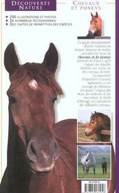 Chevaux Et Poneys - 4ème de couverture - Format classique