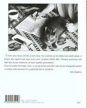 Les Chats De Hasard - 4ème de couverture - Format classique