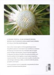 La géometrie dans le monde végétal - 4ème de couverture - Format classique