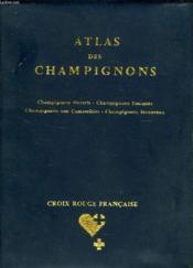 Atlas Des Champignons - Couverture - Format classique