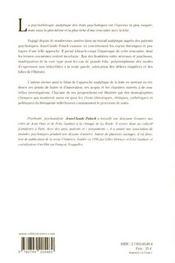 Épreuves de la folie ; travail psychanalytique et processus psychotiques - 4ème de couverture - Format classique