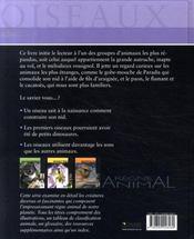 Règne Animal - Oiseaux - 4ème de couverture - Format classique