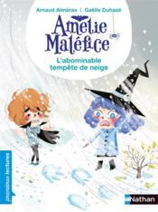Amélie Maléfice ; l'abominable tempête de neige - Couverture - Format classique