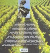 Les couleurs de la Bourgogne ; la Côte d'Or - 4ème de couverture - Format classique
