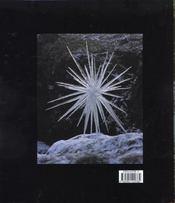 Andy goldsworthy cree avec la nature - 4ème de couverture - Format classique