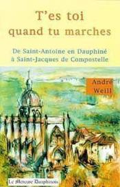 T'es toi quand tu marches ; de Saint-Antoine en Dauphiné à Saint-Jacques de Compostelle - Couverture - Format classique