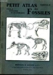 Petit Atlas Des Fossilles - Fascicule 3 : Fossiles Tertiaires Et Quaternaires - 2e Edition. - Couverture - Format classique