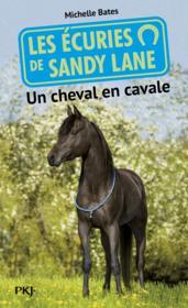 Les écuries de Sandy Lane t.7 ; un cheval en cavale - Couverture - Format classique