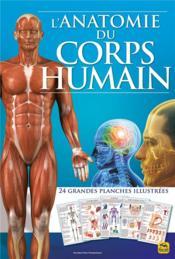 L'anatomie du corps humain ; 24 grandes planches illustrees (2e édition) - Couverture - Format classique