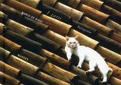 I gatti fotografie - Intérieur - Format classique