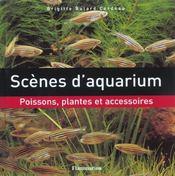 Scenes D'Aquarium - Intérieur - Format classique