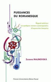 Puissances du romanesque ; regard extérieur sur quelques romans contemporains d'expression francaise - Couverture - Format classique