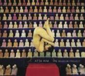 Atta Kim The Museum Project /Anglais - Couverture - Format classique