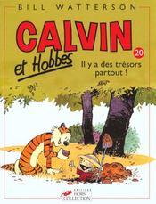 Calvin et Hobbes T.20 ; il y a des trésors partout ! - Intérieur - Format classique