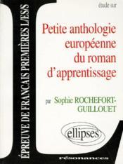 Etude Sur Petite Anthologie Europeenne Du Roman D'Apprentissage Epreuve Francais De Premieres L/Es/S - Couverture - Format classique