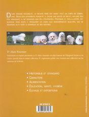Bichon frise (le) - 4ème de couverture - Format classique
