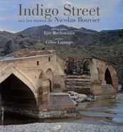 Indigo street ; sur routes de nicolas bouvier - Intérieur - Format classique