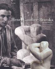 Henri Gaudier-Brzeska dans les collections du Centre Pompidou - Couverture - Format classique